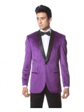 enzo-purple_img_0131-revised_1